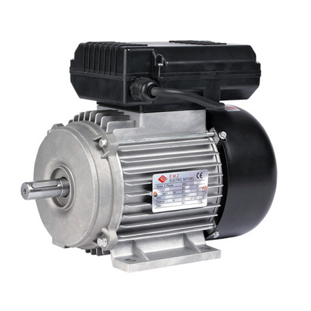 06555 Electric Motor 13Amp